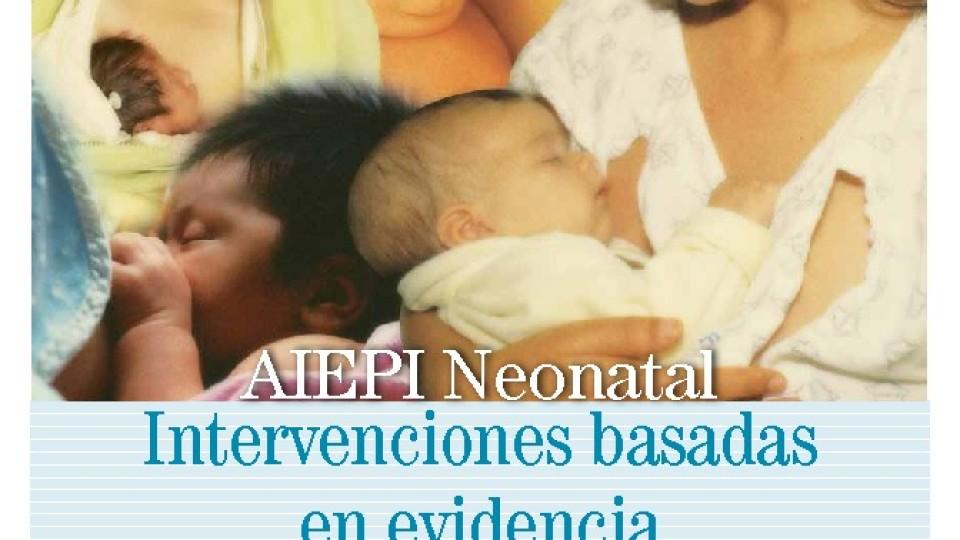thumbnail-of-Intervenciones-basadas-en-evidencia-AIEPI-Neonatal-pdf